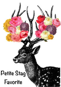 petite-stag-favorite